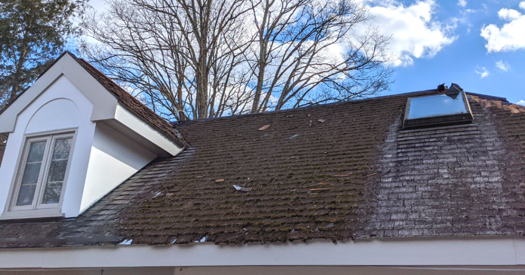Moss on a roof in Cross River, NY